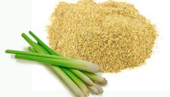 Vietnamese lemongrass powder